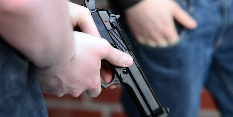 licencia de armas tipo e